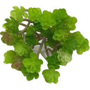 af100 : mini flower succulent branch - light green