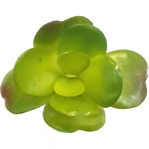 af134 : green jade succulent - mini