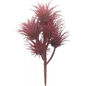 af135 : Euphorbia Firestick Succulent - Red