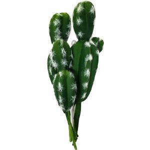 Thorny Barrell Catcus - green
