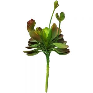 Leafy flower succulent bunch - green & red