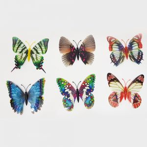 magnetic butterfly