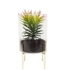 gch3130S-G : Ayita cylindrical glass hurricane/ atrium on footed stand - small