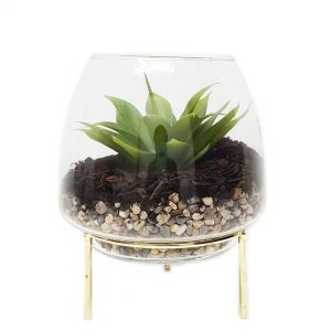 gch3132M-G : Ayita dome glass hurricane/ atrium on footed stand - Med