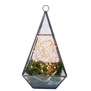 gtt02 : Terrarium glass planter - tall hanging prisim