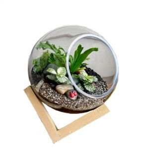 MV037-M : Dali Glass Ball atrium with wooden cubic stand - M (D20cm)